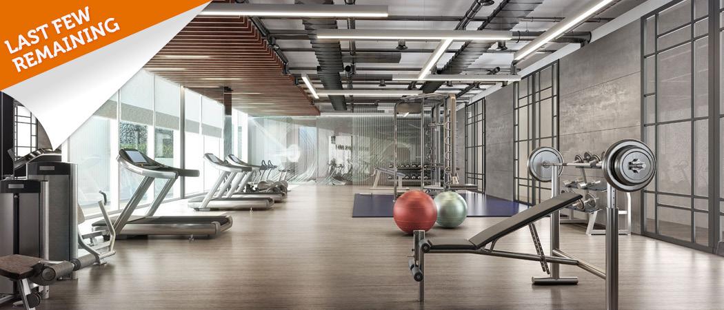 The-Cove-Dubai-last-few-remaining-gym